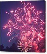 Fireworks 2014 X Canvas Print