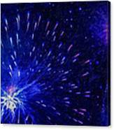Fireworks At Night 1 Canvas Print