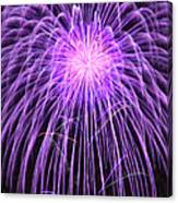 Fireworks At Night 2 Canvas Print
