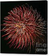 Fireworks At Night 5 Canvas Print