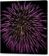 Fireworks Bursts Colors And Shapes 5 Canvas Print