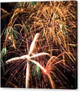 Fireworks Exploding Everywhere Canvas Print