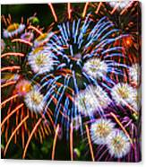 Fireworks Flower Abstract Canvas Print