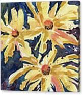 Fireworks In Flower Canvas Print