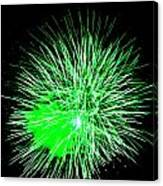 Fireworks In Green Canvas Print