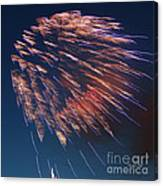 Fireworks Series I Canvas Print