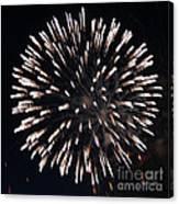 Fireworks Series X Canvas Print