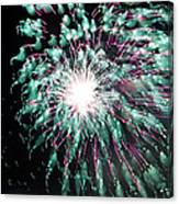 Fireworks Splendor Canvas Print