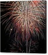 Fireworks6503 Canvas Print