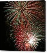 Fireworks6509 Canvas Print