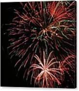Fireworks6525 Canvas Print