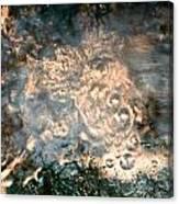 Firey Flow Canvas Print
