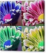 Firmenish Bicolor Pop Art Shades Canvas Print