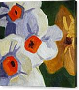 First Blooms Canvas Print