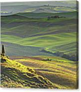 First Light In Tuscany Canvas Print