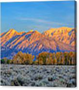 First Light On The Tetons Limited Edition Panorama Canvas Print