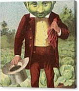First Premium Cabbage Head Canvas Print