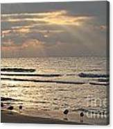 First Rays Of Dawn Canvas Print