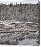 First Snow-algonquin Provincial Park Canvas Print