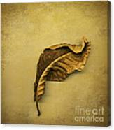 First To Fall Canvas Print