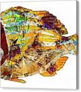 Fish 506-11-13 Marucii Canvas Print