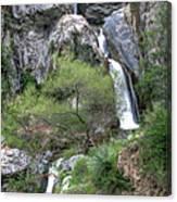 Fish Canyon Falls Canvas Print