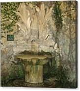 Fish Fountain Canvas Print