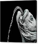 Fish Head Fountain Canvas Print