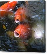 Fish Mouths 2 Canvas Print