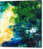 Fish Pond Canvas Print