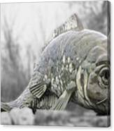 Fish Sculpture Canvas Print