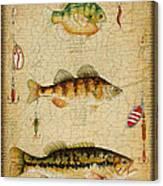 Fish Trio-c-basket Weave Canvas Print