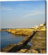 Fishing - Alexandria Egypt Canvas Print