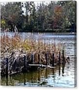 Fishing At Weeks Bay Canvas Print