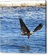 Fishing Ballet Canvas Print