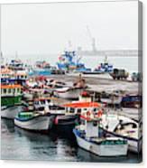 Fishing Boats Moored At A Harbor, Ponta Canvas Print