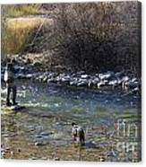 Fishing Dog On Point Canvas Print