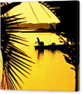 Fishing In Gold Canvas Print