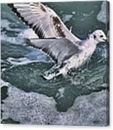 Fishing In The Foam Canvas Print