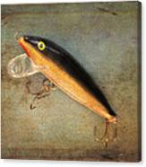 Fishing Lure II Canvas Print
