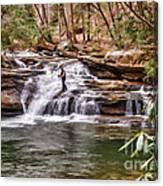 Fishing Mill Creek Falls In West Virginia Canvas Print