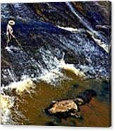 Fishing On The South Fork River Canvas Print