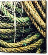 Fishing Rope Textures Canvas Print