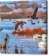 Five Canadians Canvas Print