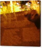 Flaming Veitnam Canvas Print