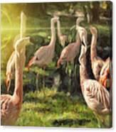 Flamingo Art Canvas Print