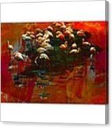 Flamingo Colours Canvas Print