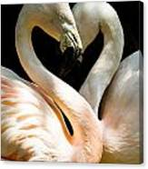 Flamingo Heart Canvas Print