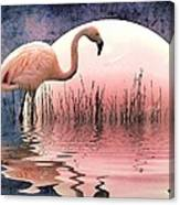 Flamingo Moon Canvas Print