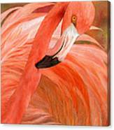 Flamingo - Spirit Of Balance Canvas Print